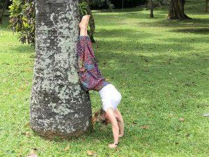 Lisa Handstand