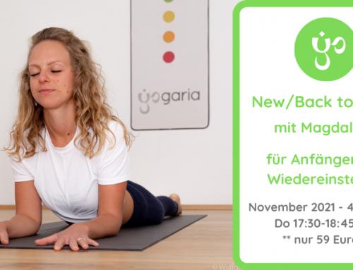 New/Back to Yoga – Neue Termine November